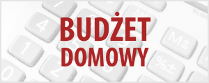 budżet domowy