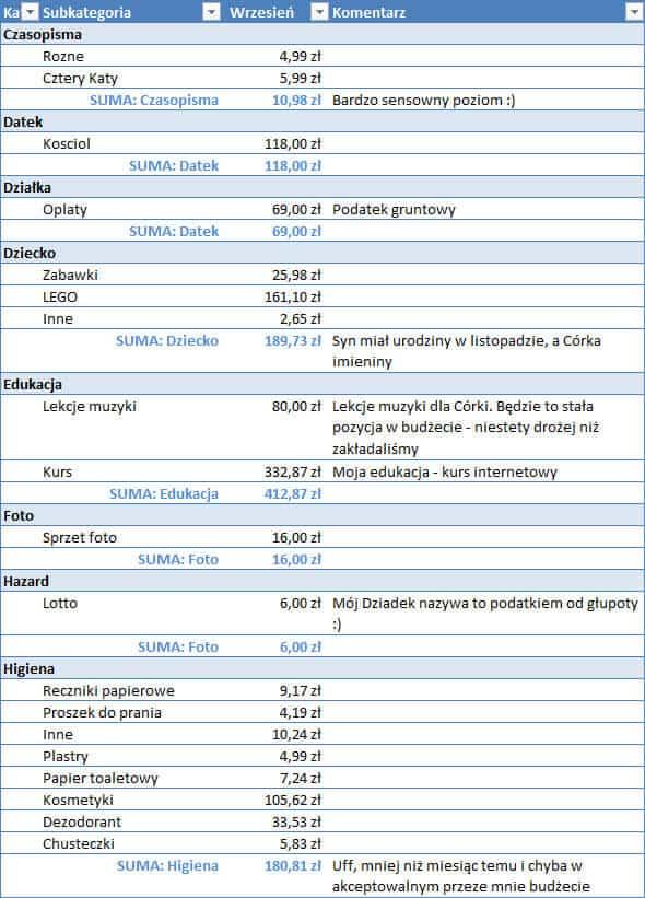 Koszty Michała w listopadzie - część 1