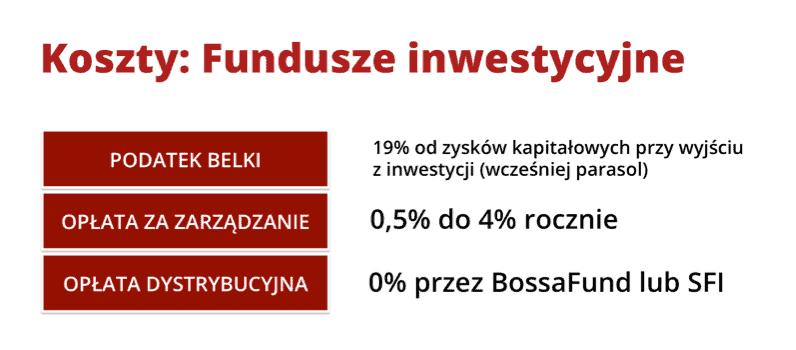 Koszty fundusze inwestycyjne