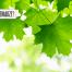 """Thumbnail image for Rachunek maklerski bez opłat? – mamy idealny produkt dla Czytelników """"Elementarza Inwestora"""""""