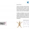 Thumbnail image for Specjalne podziękowania od Pajacyka i wyniki sprzedaży kursu BDT