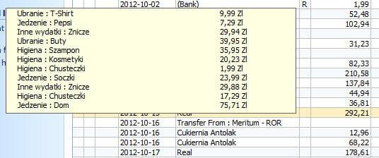 Podgląd podziału wydatków