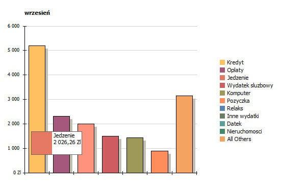 Analiza wydatków miesięcznych