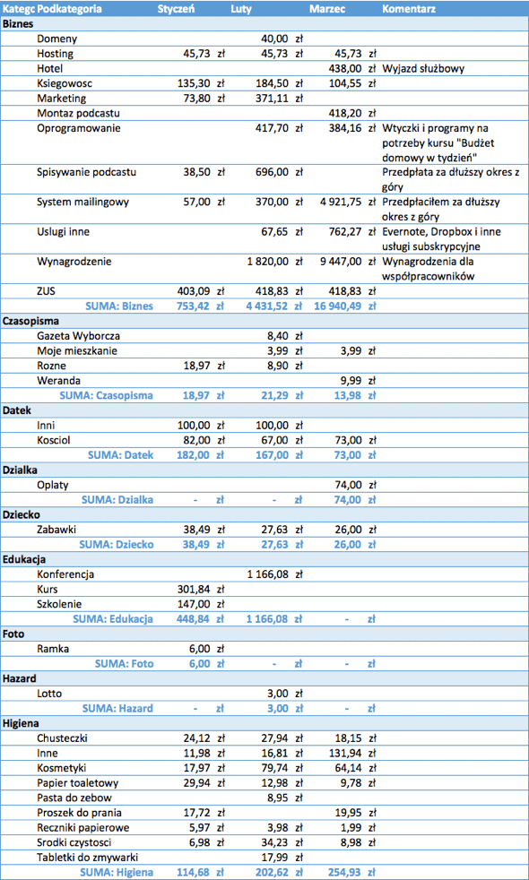 Raport Michała - koszty 1