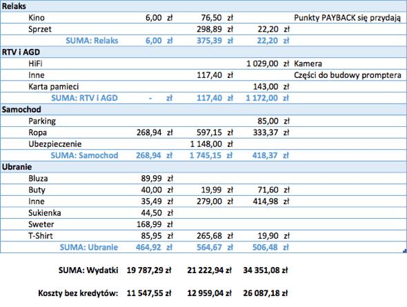 Raport Michała - koszty 3