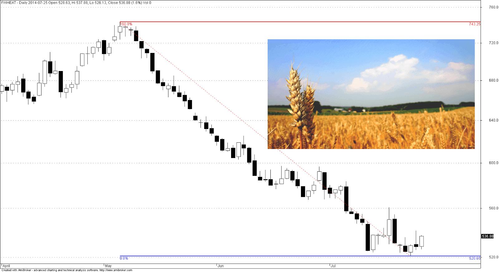 Kurs notowań pszenicy w 2014